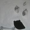 patates-peinture-et-dessins-sur-toile-2011